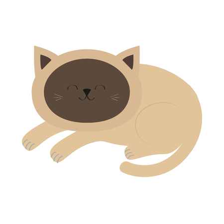 siamese cat: Lying sleeping siamese cat in flat design style. Cute cartoon character. Happy kitten with blue eyes. White background. Isolated. Vector illustration