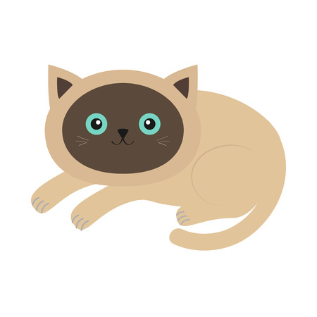 Lying siamese cat in flat design style. Cute cartoon character. Happy kitten with blue eyes. White background. Isolated.  illustration Illustration