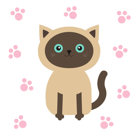 siamese cat: Siamese cat in flat design style. Cute cartoon character with blue eyes. Paw print. White background. Isolated. Vector illustration Illustration