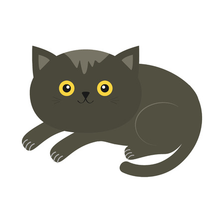 whisker: Cute lying gray cartoon cat with moustache whisker and yellow eyes. Funny character. White background. Isolated. Flat design. Vector illustration Illustration