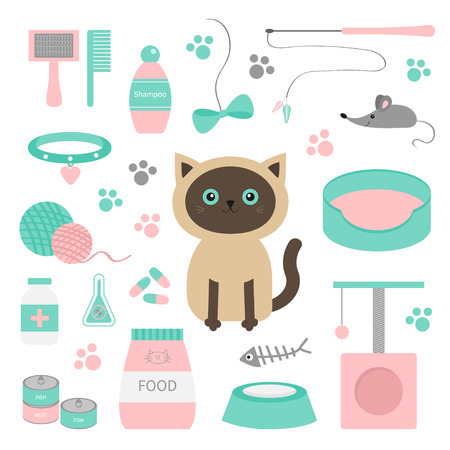clew: Cute siamese cat in flat design style. Suff set. Paw print, scrathing rope post, bed, shampoo, brush, collar, clew ball, food, plate, bowl, pill, bow mouse fish White background Isolated Vector