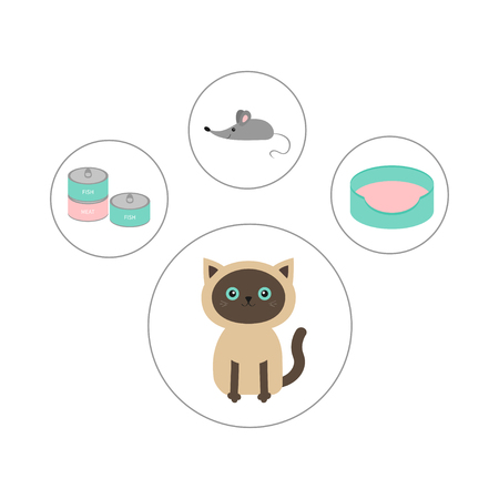 siamese cat: Siamese cat round circle icon set in shape of paw print. Cat stuff object. Mouse toy, bed, food tin can. Flat design. Cute cartoon character. Happy sitting kitten. White background. Isolated. Vector