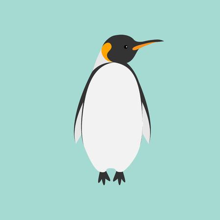 background antarctica: King Penguin Emperor Aptenodytes Patagonicus Flat design Winter antarctica background Vector illustration