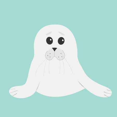 baby seal: White seal pup baby harp. Cute cartoon character. Blue background. Flat design Vector illustration