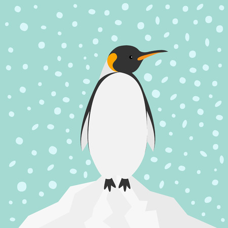 tip of iceberg: King Penguin Emperor Aptenodytes Patagonicus on iceberg Snow in the sky Flat design Winter antarctica background Vector illustration Illustration