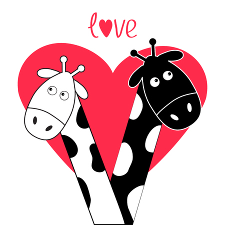 Cute cartoon black white giraffe boy and girl Big heart. Camelopard couple on date. Funny character set. Long neck. . Happy family. Word Love Greeting card. Flat design. Isolated. Vector Illustration