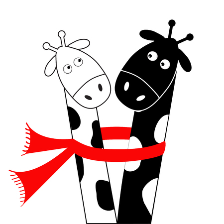 long neck: Cute cartoon black white giraffe wearing red scarf. Boy girl couple. Camelopard on date. Long neck. Funny character set. Happy family. Love greeting card. Flat design. Isolated. Vector