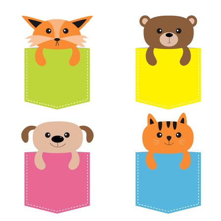 주머니에 동물. 귀여운 만화 다채로운 개, 곰, 여우, 고양이 키티 캐릭터. 대시 라인. 애완 동물 컬렉션. 흰색입니다. T 셔츠 디자인. 아기 배경. 평면 벡