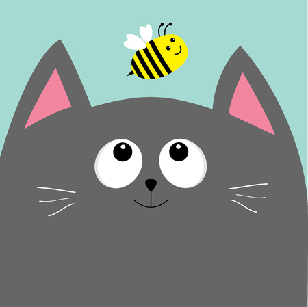 gray cat: Gray cat head looking at honey bee insect. Cute cartoon character. Pet baby collection Card. Flat design. Blue sky background. Vector illustration. Illustration