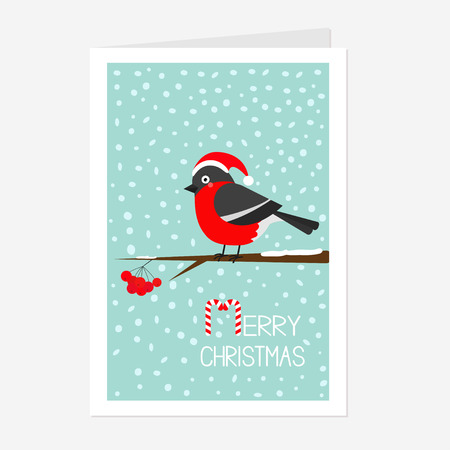 Bullfinch winter red feather bird sitting on rowan rowanberry sorb berry tree branch. Santa hat. Cute cartoon funny character. Greeting card. Flat design. Blue snow background Vector illustration Illustration