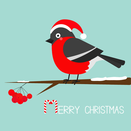 sorb: Bullfinch winter red feather bird sitting on rowan rowanberry sorb berry tree branch. Santa hat. Merry Christmas greeting card. Candy cane. Cute cartoon baby character Flat Blue snow background Vector Illustration