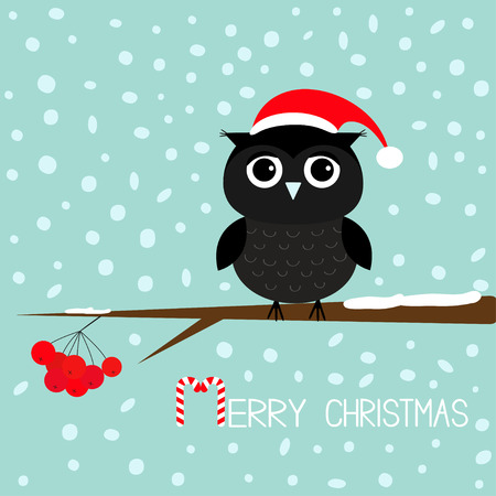 Black owl in Santa Claus hat. Cute cartoon character sitting on rowan rowanberry sorb berry tree branch. Snow flake blue background. Merry Christmas Candy cane text. Greeting card. Flat design. Vector Illustration