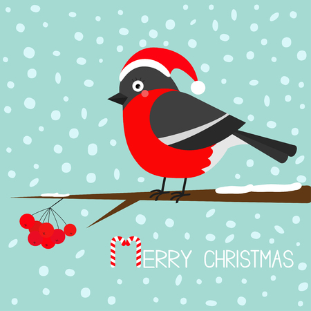 sorb: Bullfinch winter red feather bird sitting on rowan rowanberry sorb berry tree branch. Santa hat. Cute cartoon funny character. Baby collection. Flat design. Blue snow background Vector illustration
