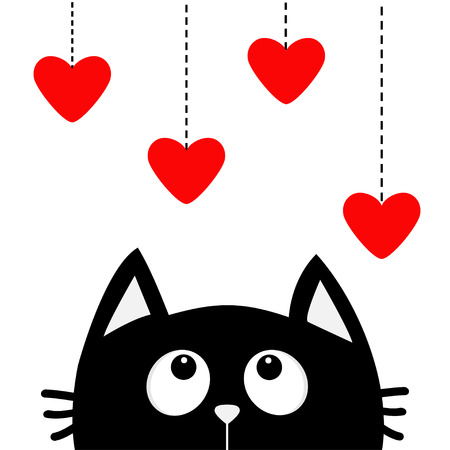 Black cat looking up to hanging red hearts.