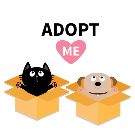 delivered: Adopt me. Dont buy. Dog Cat inside opened cardboard package box. Ready for a hug. Puppy pooch kitten cat looking up to pink heart. Pet adoption Flat design Help animal concept White background. Vector Illustration
