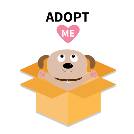 Adopt me. Dont buy. Cat inside opened cardboard package box. Ready for a hugging Kitten. Illustration