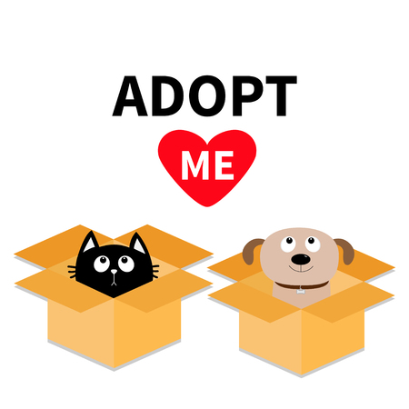 delivered: Adopt me. Dont buy. Dog Cat inside opened cardboard package box. Pet adoption Puppy.