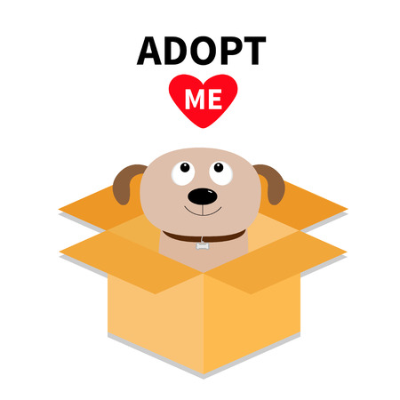 delivered: Adopt me. Dont buy. Dog inside opened cardboard package box. Pet adoption. Puppy pooch looking up to red heart. Flat design style. Help homeless animal concept. White background. Isolated. Vector