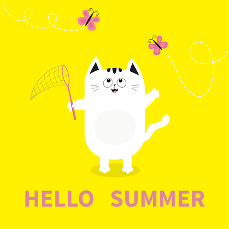 Hello Summer. White Cat Pink Butterfly Insect, Net. Dash Line Track.