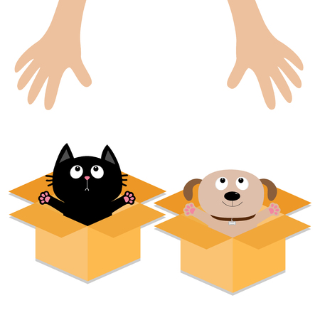 Human hand. Dog Cat inside opened cardboard package box. Ready for a hug. Puppy pooch kitten cat looking up to pink heart. Pet adoption Flat design Help animal concept White background. Vector
