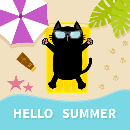 suntan lotion: Black cat sunbathing on the beach Yellow air pool water mattress. Hello summer.