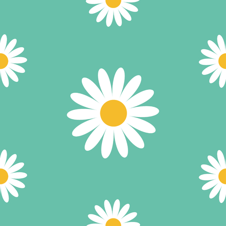 daisy wheel: White daisy chamomile. Cute flower plant collection. Camomile icon Growing concept. Illustration