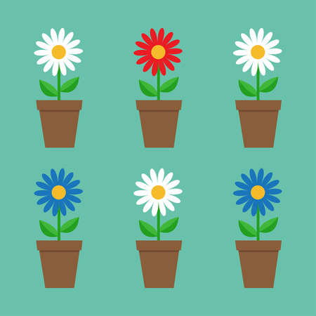 daisy wheel: Daisy chamomile in pot. Cute flower plant collection. Love card. White red blue camomile icon set Growing concept. Flat design. Green background. Isolated. Vector illustration