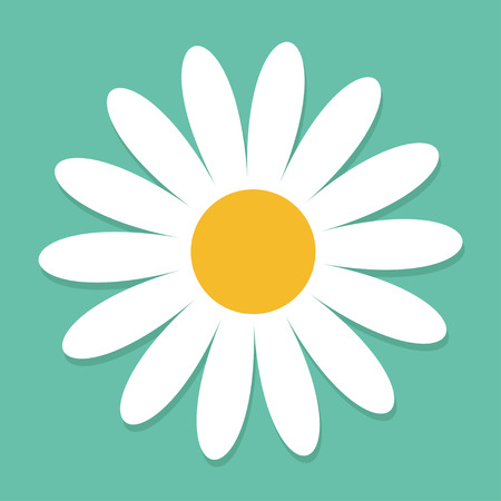 daisy wheel: White daisy chamomile. Cute flower plant collection. Love card. Camomile icon Growing concept. Flat design. Green background. Isolated. Vector illustration Illustration