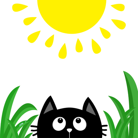 Black cat face head silhouette looking up to shining sun Illustration