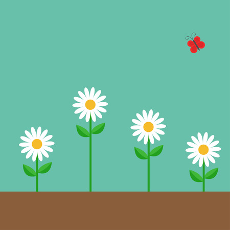 daisy wheel: Red butterfly. White daisy chamomile set. Cute growing on ground flower plant. Love card. Camomile icon. Flat design. Green background. Isolated. Vector illustration