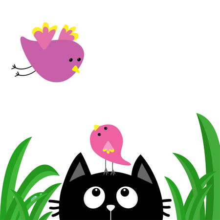 Black cat face head silhouette looking up to mother and baby bird. Green grass dew drop. Cute cartoon character. Kawaii animal. Pet collection. Flat design style. White background. Isolated Vector