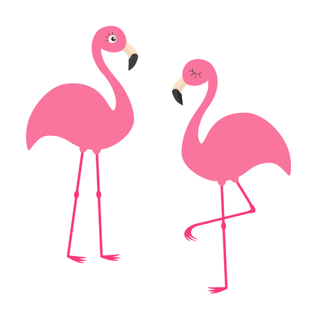 Two pink flamingo set. Exotic tropical bird with eyes. Zoo animal kids collection. Cute cartoon character. Decoration element. Flat design. White background. Isolated. Vector illustration