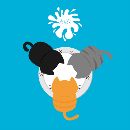 Three kittens eating drinking milk from bowl. Blot with splash. Top air view. Cat feeding. Funny baby kitty animal family. Cute cartoon pet character set. Flat design Blue background Isolated. Vector Illustration