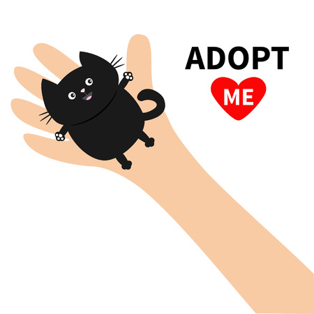Adopt me. Hand arm holding black cat. Animal pet. Helping hands concept. Funny gift. Cute cartoon character. Çizim