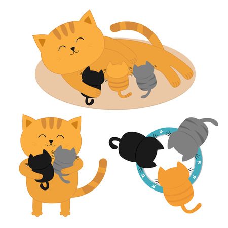Cat mother laying on the floor feeding kittens. Animal family. Three kittens drinking milk from bowl. Cute cartoon character set. Flat White background. Vector