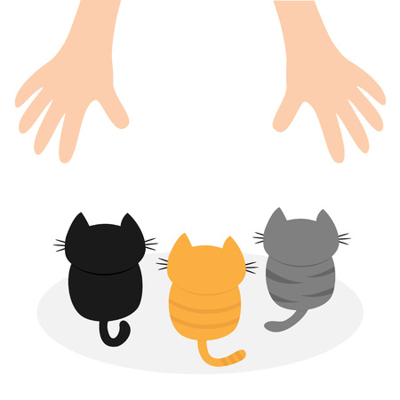 black family: Black, orange, gray kittens looking up to human hand. Cute cartoon funny character. Helping hands concept. Red heart. Love card Flat design White background Isolated Vector