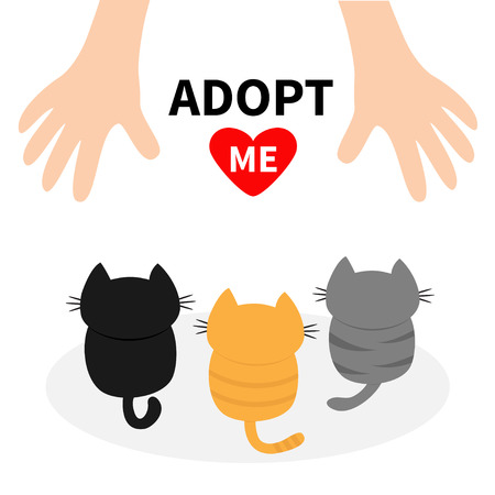 black family: Adopt me. Three kittens looking up to human hand. Cute cartoon funny character. Animal hug. Helping hands concept. Red heart. Love card Flat design White background Isolated Vector illustration Illustration