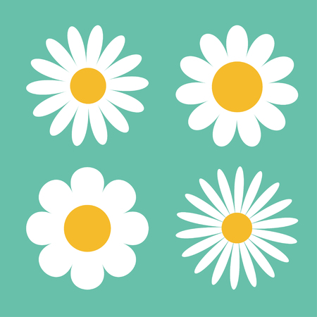 Camomile icon set. White daisy chamomile. Cute round flower plant collection. Love card symbol. Growing concept. Flat design. Green background. Isolated. Vector illustration Illustration