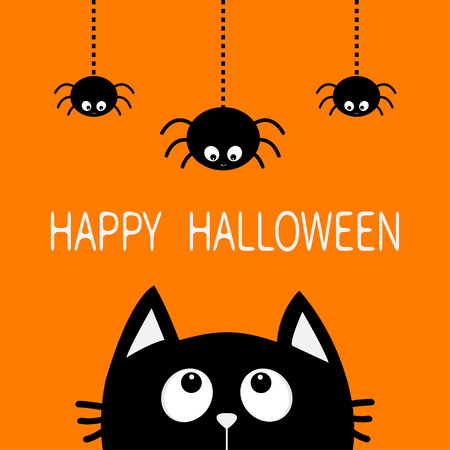 Happy Halloween, Black cat face head silhouette looking up to three hanging on dash line web spider insect, Cute cartoon character.