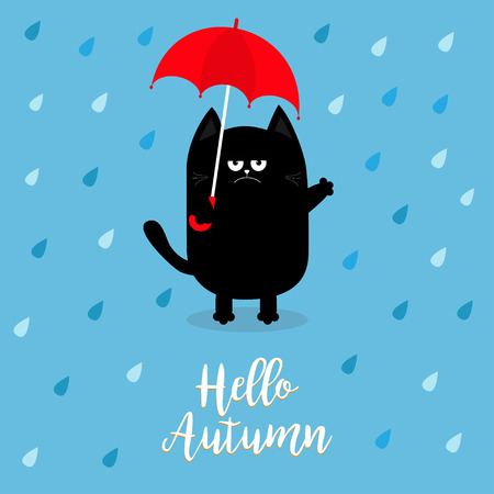 Hello autumn. Black cat holding red umbrella. Rain drops. Angry sad emotion. Hate fall. Cute funny cartoon baby character. Pet animal collection. Blue background. Isolated. Vector illustration