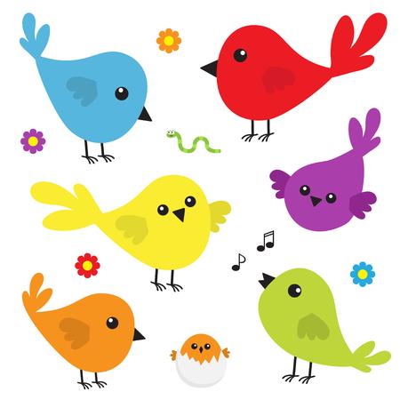 Jeu d'icônes d'oiseaux. Personnage coloré de dessin animé mignon. Oiseaux bébé collection. Élément de décoration. Chanter une chanson. Fleur, ver note de musique d'insecte, nidification de coquille. Design plat Fond blanc. Isolé. Vecteur