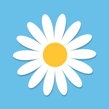White daisy chamomile. Cute flower plant collection. Love card. Camomile icon Growing concept. Flat design. Blue background. Isolated. Vector illustration