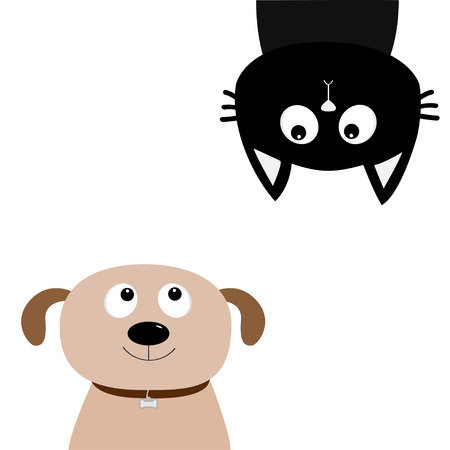 Dog, cat upside down. Pet adoption. Dont buy. Puppy pooch, kitty cat looking up. Help homeless animal concept.
