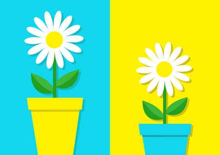 White daisy chamomile icon set, flower pot, cute plant collection. Love card, chamomile growing concept flat design. Bright blue and yellow colorful background template isolated vector illustration.