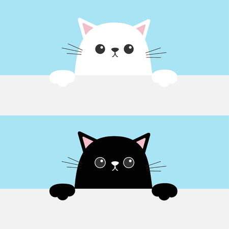 Black and white funny cats head hanging on paper board illustration Çizim