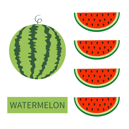 Watermelon fruit icon set. Round water melon. Red slice with seeds in a row. Cut half. Healthy food. Flat lay design. Bright color. Top air view. White background. Isolated. Vector