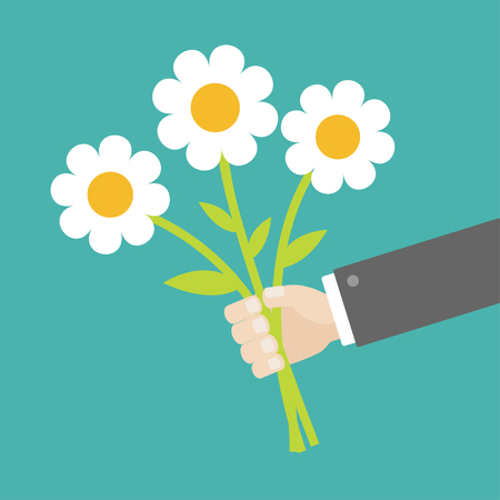 Businessman hand holding bouquet of white daisy chamomile camomile marguerite flowers. Flat design. Green background. Isolated. Vector illustration
