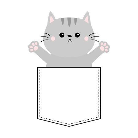 Gray cat in pocket. Holding hands up. Give me a hug. Cute cartoon animals. Kitten kitty character. Dash line. Pet animal . White background. T-shirt design. Baby collection. Flat design Vector