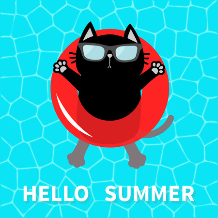 Hello Summer. Swimming pool water. Black cat floating on red pool float water circle. Top air view. Sunglasses. Lifebuoy. Cute cartoon relaxing character. Flat design. Vector
