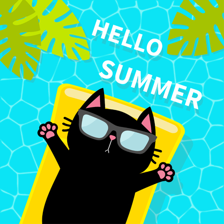 Swimming pool. Black cat floating on yellow pool float water mattress. Top air view. Sunglasses. Hello Summer. Lifebuoy. Palm tree leaf. Cute cartoon relaxing character Flat design Vector illustration